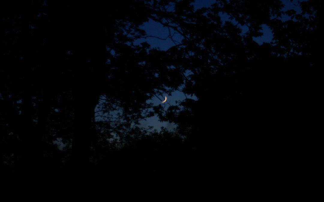 Picknick bij maanlicht
